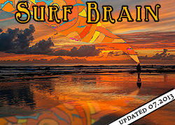 david j diamant - Surf Brain